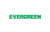 Композитная черепица Evergreen